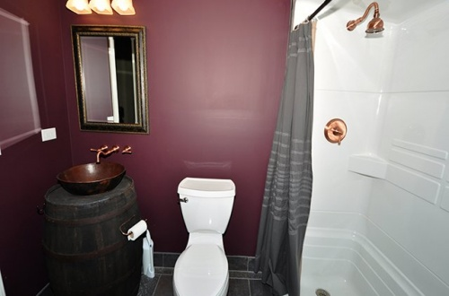 21 Lower Level Bathroom